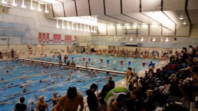 crowded-pool